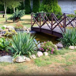 Nasz Ogród